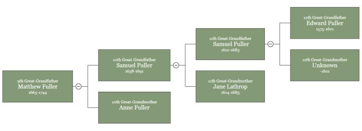 Fuller Tree3