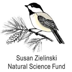 Susie Zielinski3